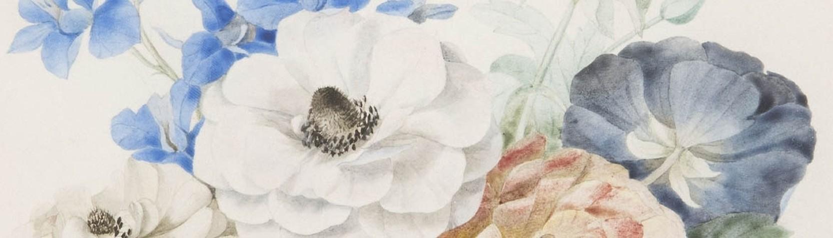 Artisti - Pierre Joseph Redouté
